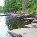 River rocks trees